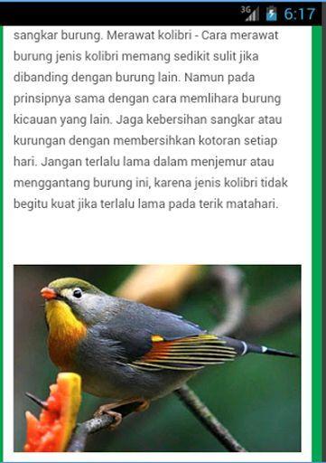 Aneka Jenis Burung Adalah Aplikasi Android yang membahas tentang beragam jenis burung beserta panduan untuk merawat dan memelihara burung..<br>aplikasi ini dilengkapi dengan suara kicau beragam jenis burung yang dapat di gunakan untuk melatih (masteran) burung..<p>Jenis Burung yang di Bahas Dalam Aplikai Ini Antara Lain :<p>* Burung Perkutut<br>* Burung Kenari<br>* Burung Robin Cina<br>* Burung kolibri Ninja<br>* Burung Kaswari<br>* Burung Parkit<br>* Burung Pleci<br>* Burung Murai Batu<br…