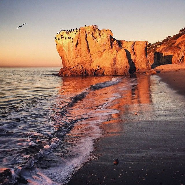 California dreaming in Malibu. Photo courtesy of ravenreviews on Instagram.