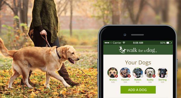 Clicker Dog Training Dog Training App Iclicker Ios Ez Free