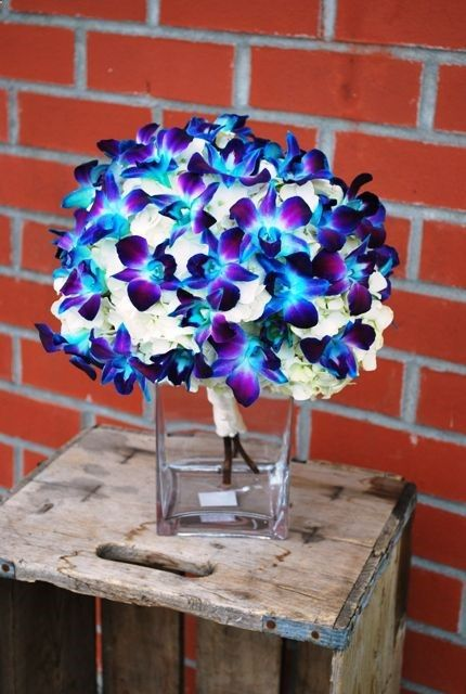 blue-dendrobium-orchid-bouquet, beautiful and bright blue colors