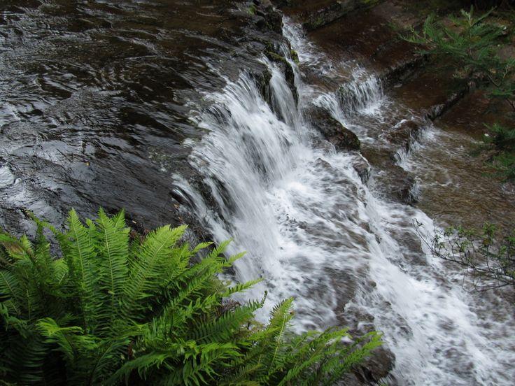 Liffey Falls Northern Tasmania
