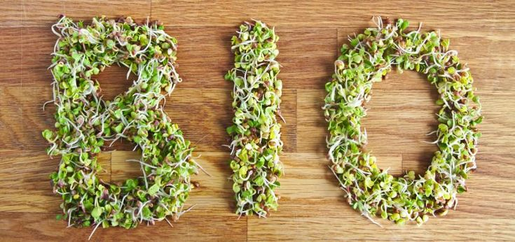 Zdrowe jedzenie: czym są produkty BIO?