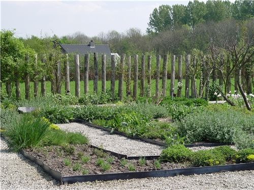 1000 ideas about garden dividers on pinterest bamboo for Lawn divider