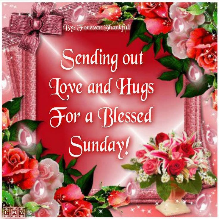 Sending All My Friends Love And Hugs For A Blessed Sunday