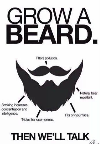 I added this picture because a beard is the way of the man and shows you have what it takes.  A beard will make others look at you differently and is not for everyone.