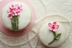 Pink Daffodils. love it