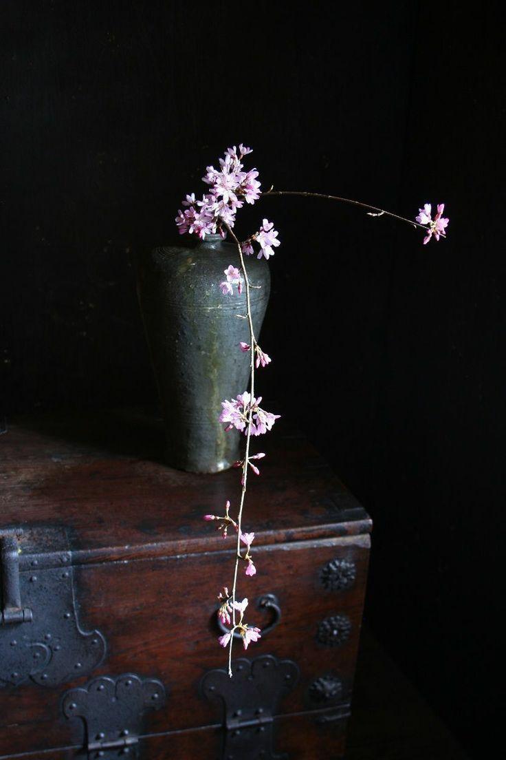 ikebana | flowers + floral arrangement