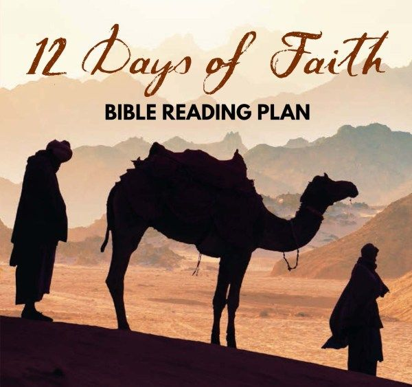 7 best free bible reading plans images on pinterest bible reading 12 days of faith bible reading plan fandeluxe Images