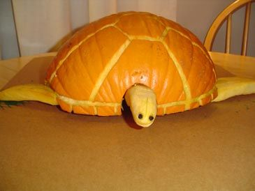 extreme pumpkin carving templates - 25 best pirate pumpkin carving ideas images on pinterest