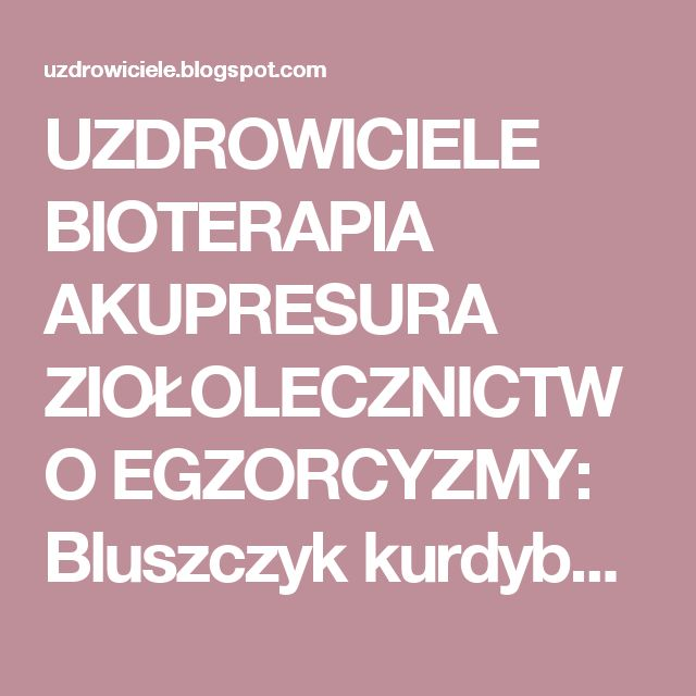 UZDROWICIELE BIOTERAPIA AKUPRESURA ZIOŁOLECZNICTWO EGZORCYZMY: Bluszczyk kurdybanek - cudowne lekarstwo