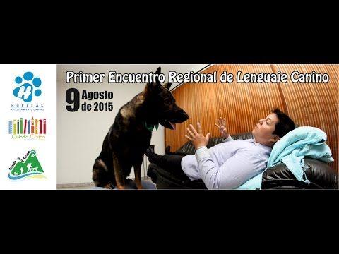 Primer Encuentro Regional De Lenguaje Canino - YouTube