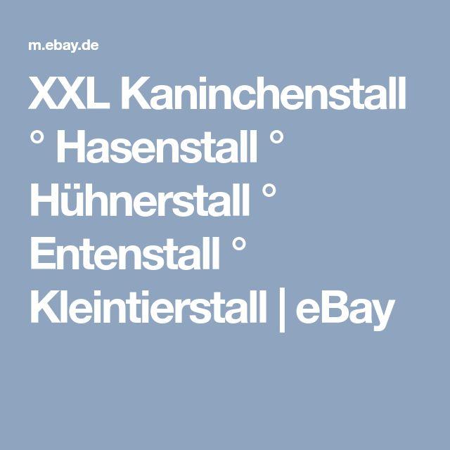 XXL Kaninchenstall ° Hasenstall ° Hühnerstall ° Entenstall ° Kleintierstall | eBay