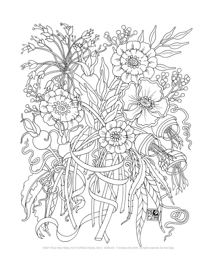 Adult Coloring Pages Edibles Set of 8 by emerlyearts on Etsy