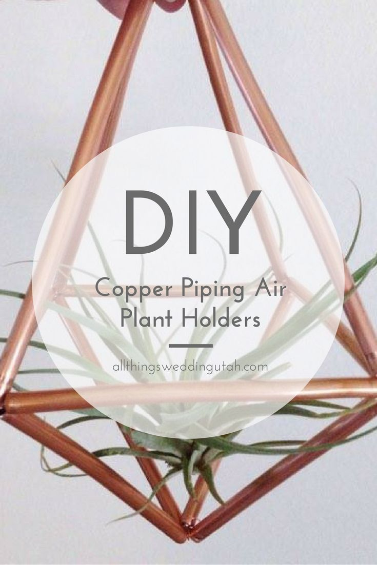 Copper Piping Air Plant Holder - DIY, Wedding, Reception