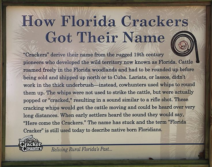 How Florida Crackers got their name.  Yes, I am a 5th generation Florida native!