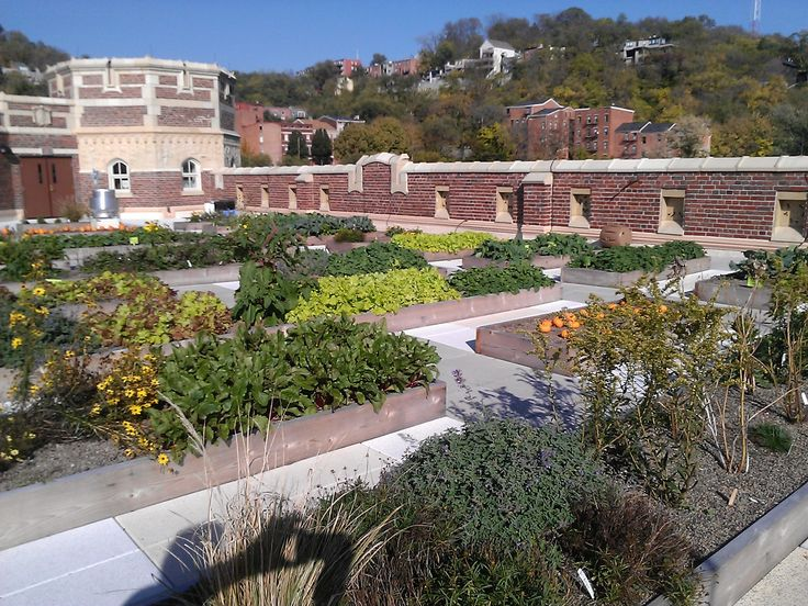1000 Images About Green Roofs In Cincinnati On Pinterest