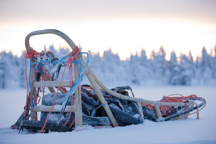#sledding #huskies #sled #winter #travel #finland