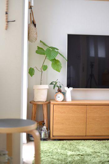 テレビは強い「陽の気(強力な電磁波)」を持っていると言われています。観葉植物は、気を緩和させる力を持っているので、テレビの横に植物を飾ってみるのがおすすめ♪テレビを見ている時に、自然と植物が目から入ってくるのは気分転換にもなりますよね。風水を意識しなくても、植物の配置に悩んでいる方にはお勧めの場所ですよ。