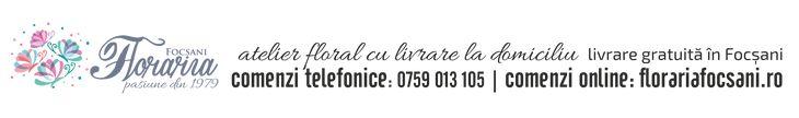 http://florariafocsani.ro/Buchete-de-flori-frezii-focsani