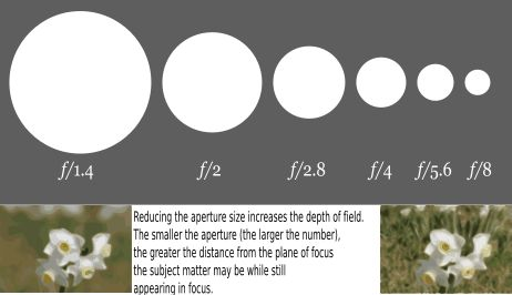 f/ numbers are a ratio of the diameter of your aperture compared to your lens. Hence, a larger number is a smaller aperture.