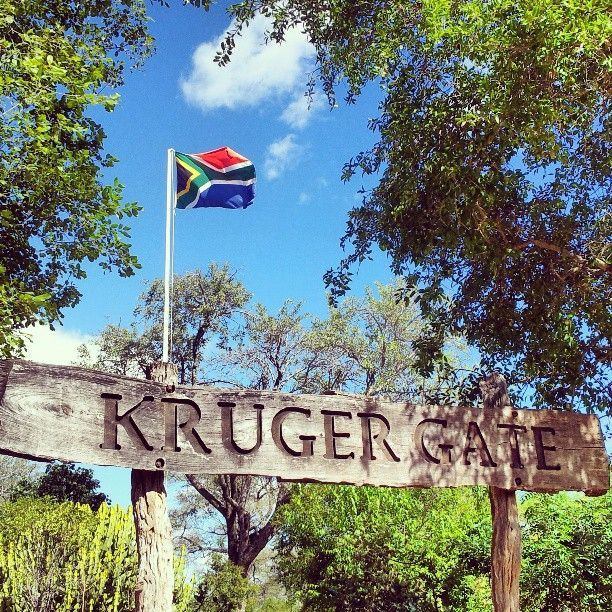 Kruger National Park #meetSouthAfrica
