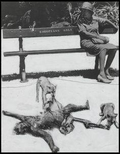Peter Kennard 'Apartheid South Africa', 1974 © Peter Kennard