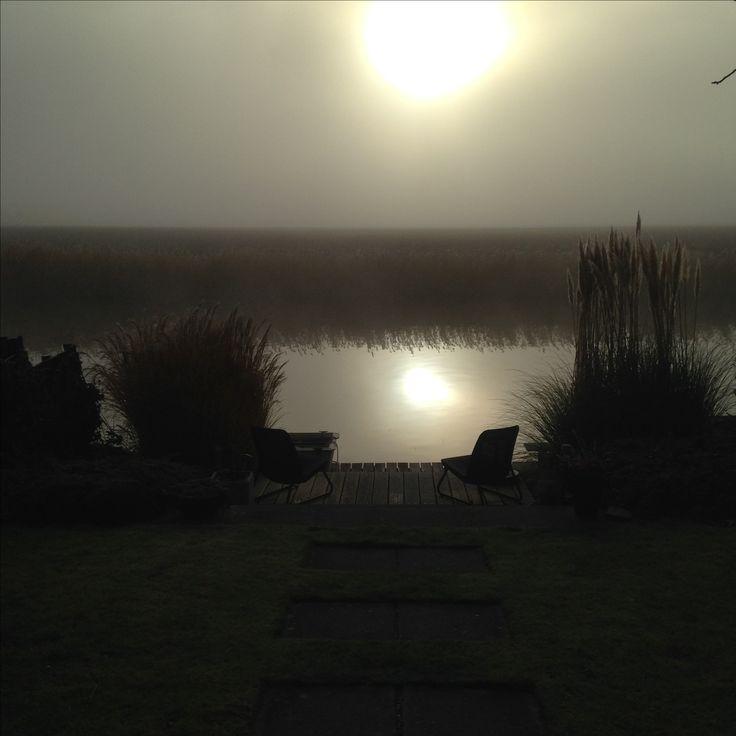 Mist Ochtendzon Tuin 2016-11