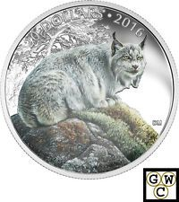 2016 'The Commanding Canadian Lynx' Colorized $20 Silver Coin 1oz Silver (17673)