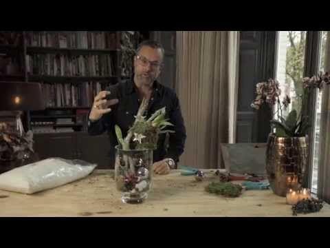 Kerstcreatie met amaryllis - YouTube