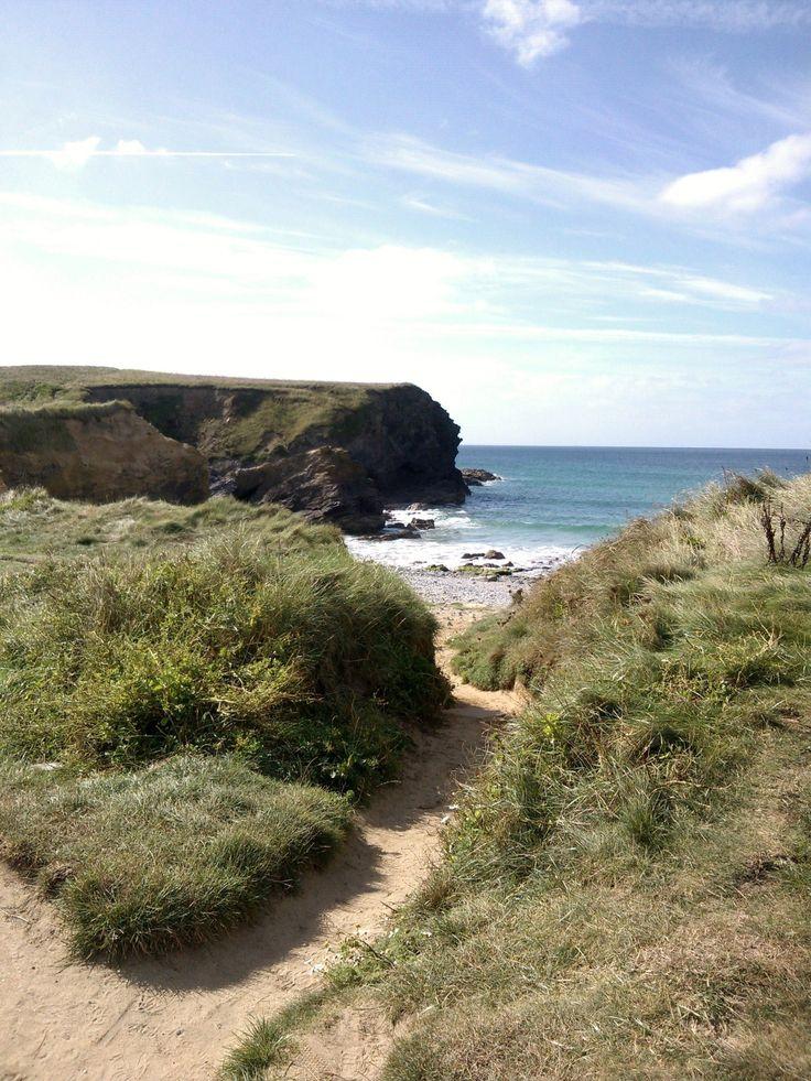 Path from Car Park to Gunwalloe Cove, near Helston Cornwall by mm August 2013