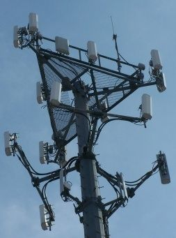 Your typical Cell Phone Tower. Thousands of these have been constructed all over the USA. Many of these generate microwaves at levels too intense for sensitive individuals or those living or working too close.