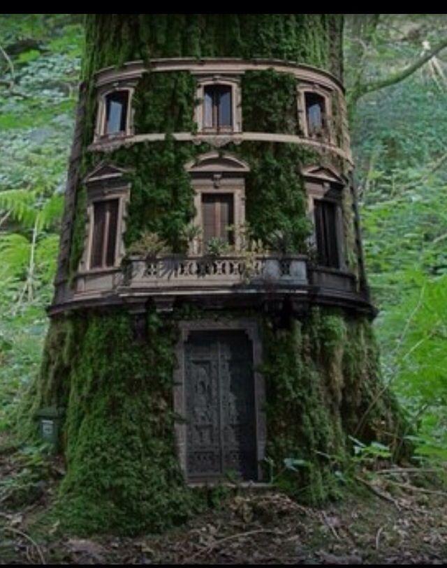 Marvelous Fairy Houses... Gnome Tree Stump HouseFairy ...