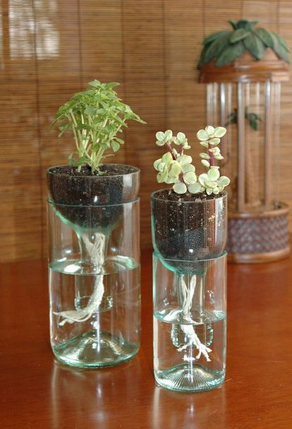 ideas on how to recycle wine bottles, outdoor living, repurposing upcycling, self watering planter made from recycled wine bottle