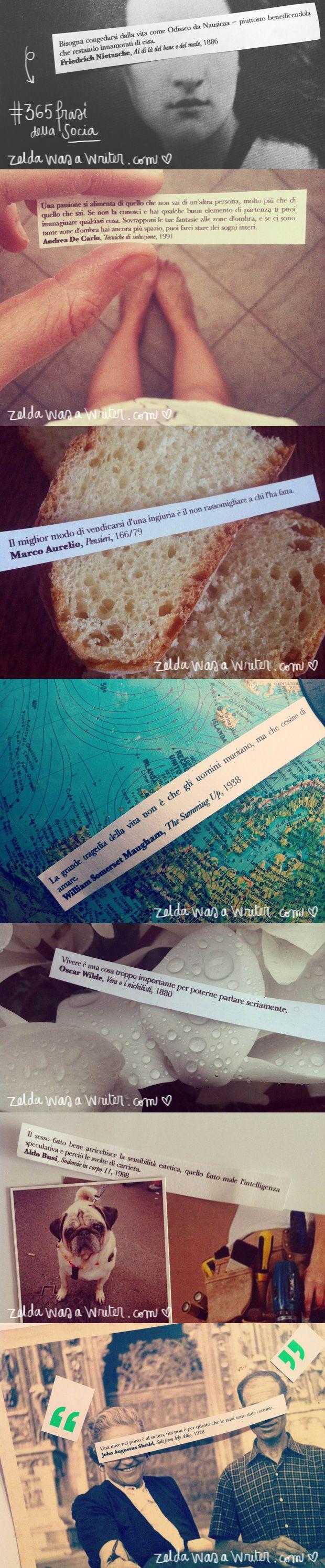 Fiori & Frasi - 17 gennaio 2014 | Zelda was a writer