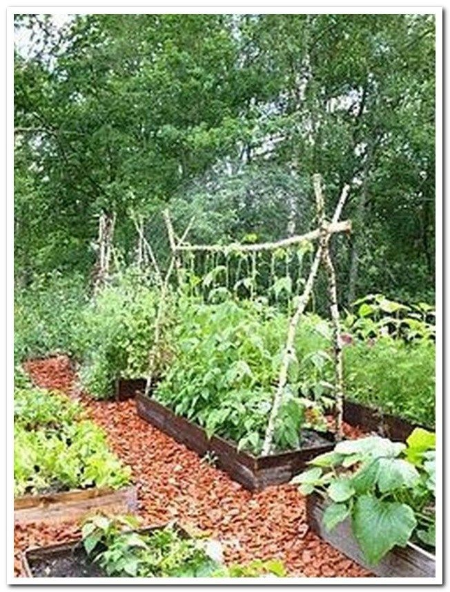 32 Easy And Low Maintenance Front Yard Landscaping Ideas #frontyardlandscaping #… | Vegetable Garden Design, Small Vegetable Gardens, Vegetable Garden For Beginners