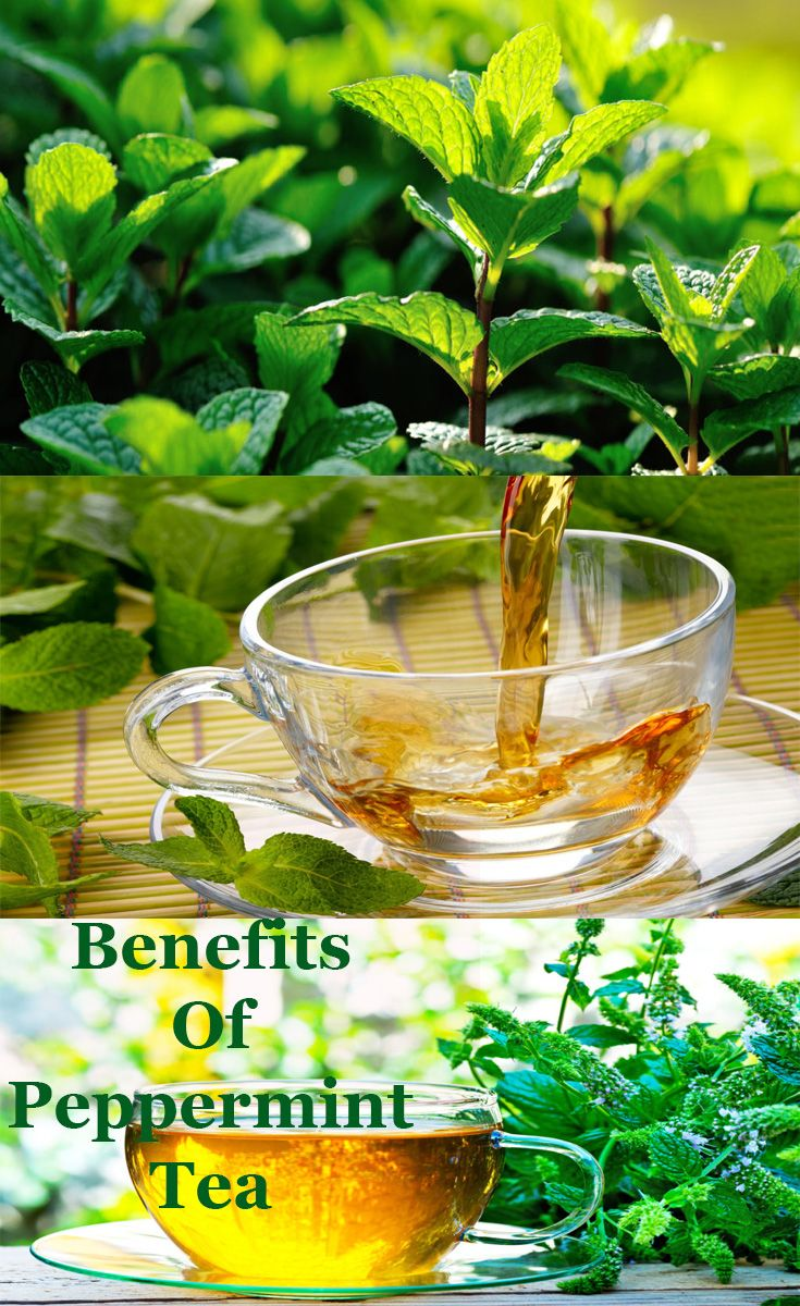 Peppermint tea is an infusion made from peppermint leaves and is consumed as a tea.