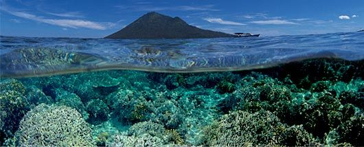 Bunaken National Park, North Sulawesi, Indonesia Amazing clear waters, beautiful macro diving