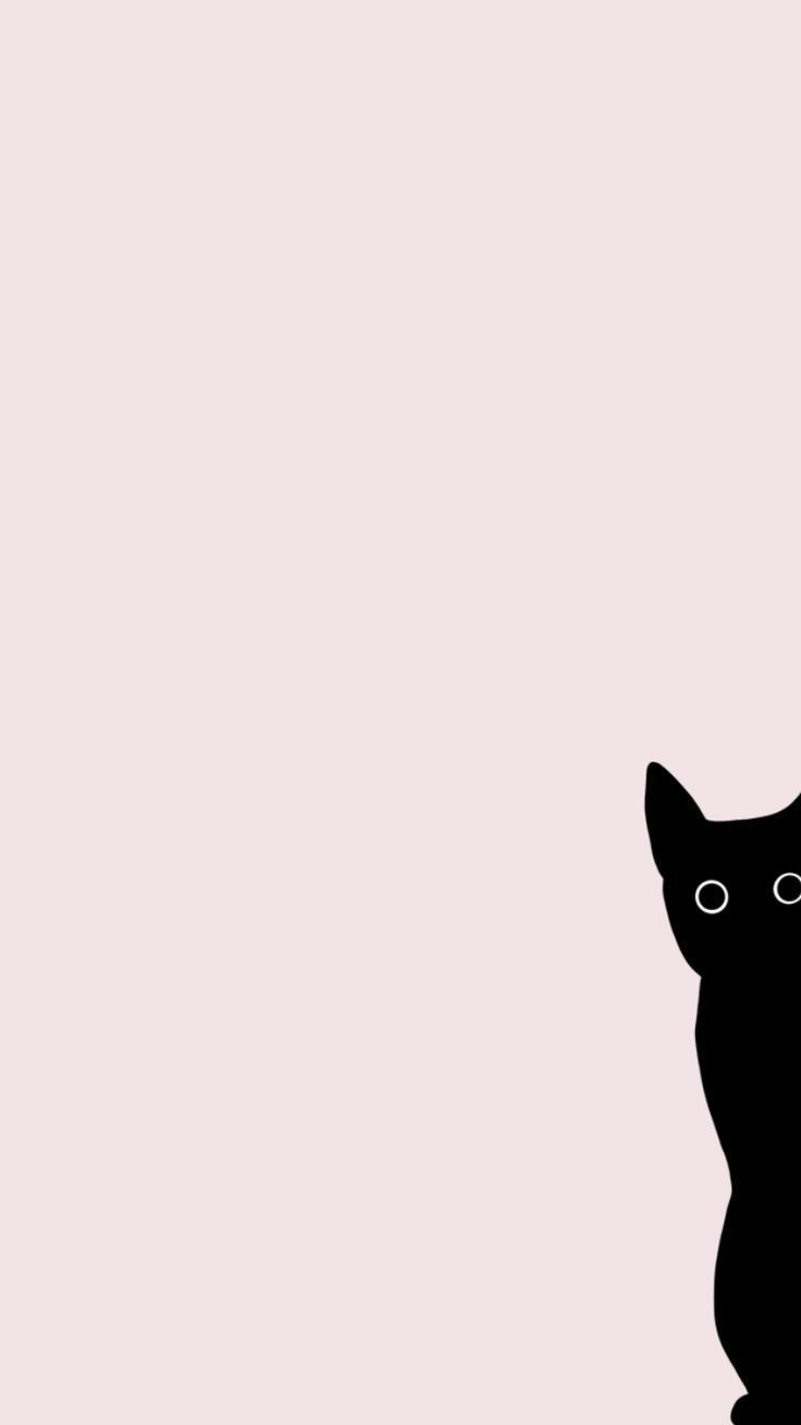 Black Cat Cute Funny Pink Free Iphone Background Wallpaper Ipad Pro Trending Ipad Pro For Cat Phone Wallpaper Wallpaper Iphone Cute Ipad Wallpaper