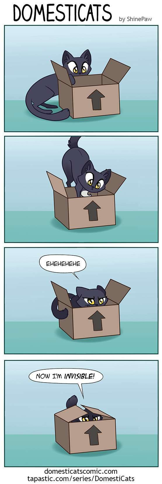 DomestiCats :: Invisible | Tapastic Comics - image 1