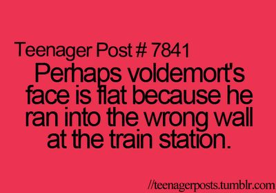 """""""Perhaps Voldemort's face is flat because he ran into the wrong wall at the train station."""" HAHAH"""