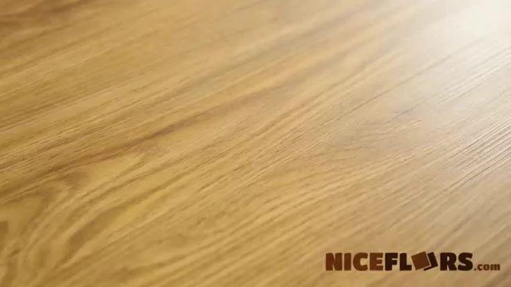 Best 25 waterproof flooring ideas on pinterest for Dog proof wood floors
