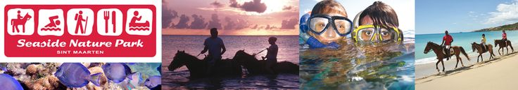 Welcome | horseback riding - Seaside Nature Park - Sint Maarten, sxm