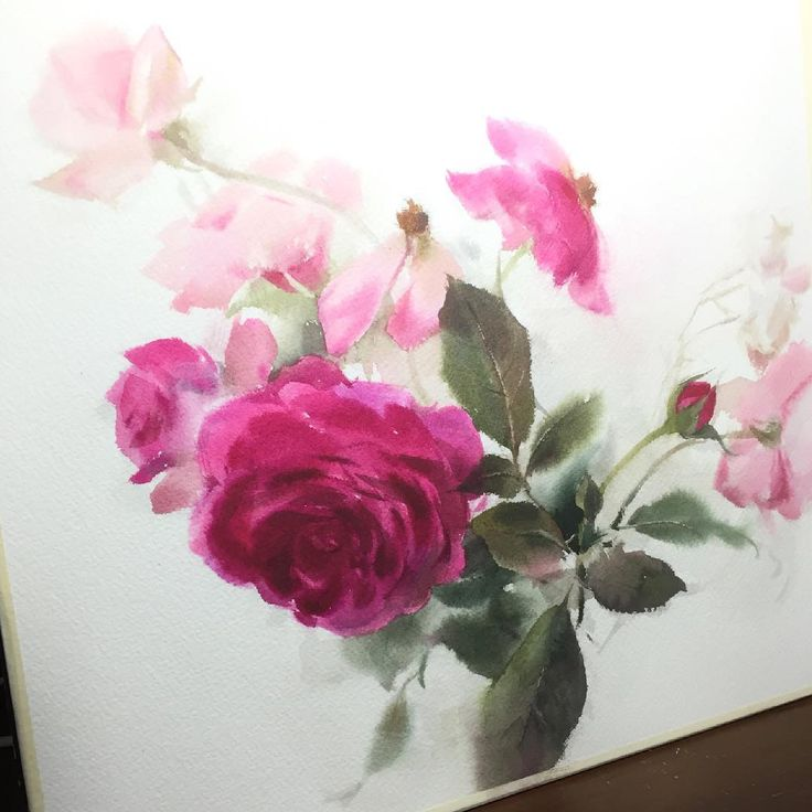 In progress... Good morning from Thailand. #watercolor #art #artist #paint #painting #sweet #rose #in #progress