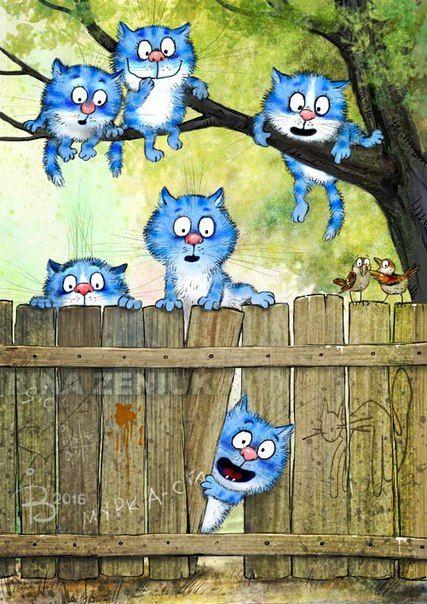 A curiosidade acionou os gatinhos... rs Dani Cabo