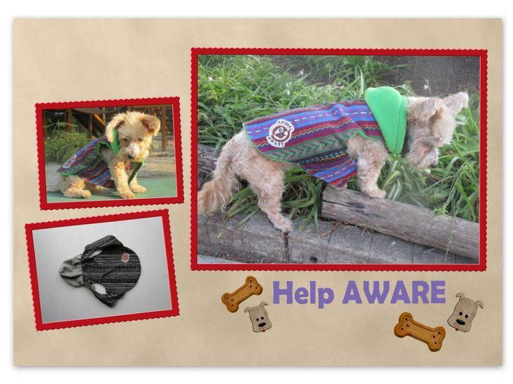 ¿QUIERES UN TRAJE ESPECIAL PARA EL CONSENTIDO DE LA CASA? Tenemos para todos los tamaños, desde los pequeñitos hasta los más grandes... 6 diferentes tamaños.   Todos los trajes tienen el logo de AWARE, ya que su venta es a beneficio de este refugio, donde viven más de 300 perros y alrededor de 80 gatos abandonados (http://animalaware.org/es/). Puedes comprarlos en línea en HELPING FRIENDS.