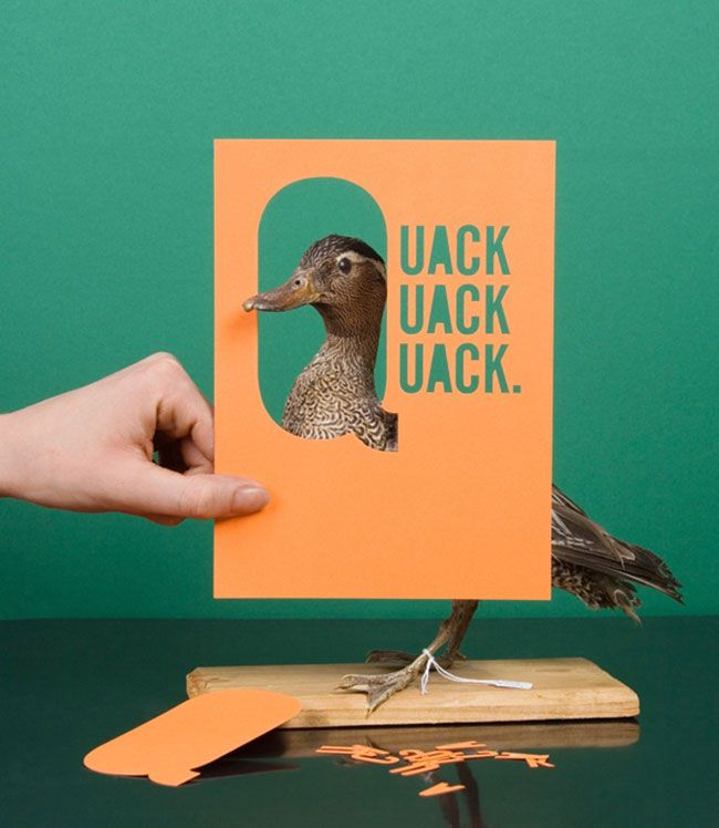 Stuffed birds and cool lettering at Dutch Design Week    http://www.lostateminor.com/2013/02/25/stuffed-birds-and-cool-lettering/