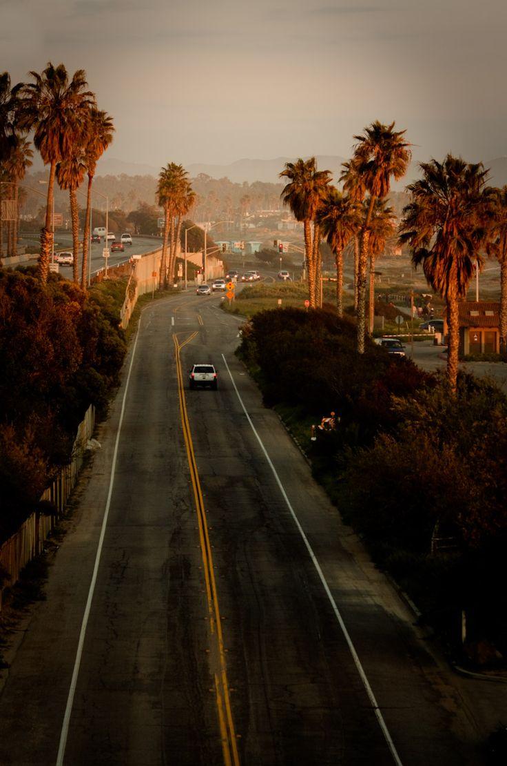 Ventura, palmeras de California y camino en puesta del sol