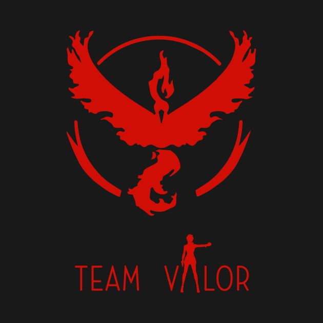 Check out this awesome 'Team+Valor+PokemonGO' design on @TeePublic!