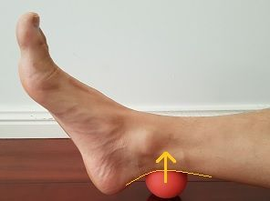 Do you want to fix your flat feet? Here is a list of the best exercises on how to fix flat feet. Eliminate your fallen arches and regain your foot arch!