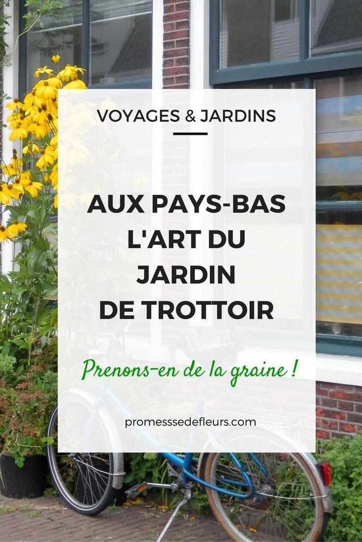 En Hollande, on jardine sur le trottoir et c'est charmant ! Découvrez les photos et nos conseils pour créer un petit jardin de trottoir.